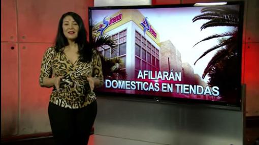 Patricia Solano: Afiliarán domésticas en tiendas