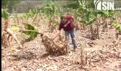 CAASD entrega a Medina Plan de Contingencia para mitigar impacto de Sequía