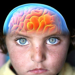 Encuentran un posible tratamiento para un tumor cerebral letal en niños