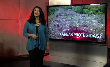 Patricia Solano: ¿Áreas protegidas?