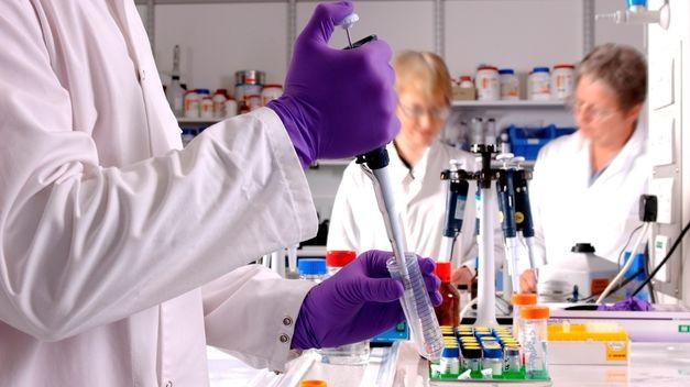 Un fármaco experimental logra reducir un difícil tumor de pulmón