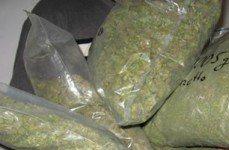 Dican de la PN ocupa 155 libras de marihuana