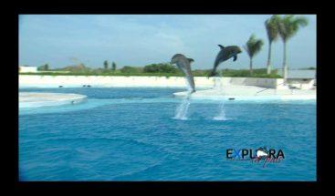 ¡Explora tu país! Punta Cana: Principal destino turístico de