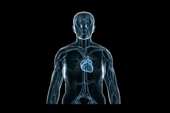 ¿Cómo prevenir las enfermedades coronarias?