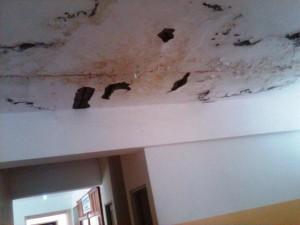 En condiciones críticas opera el Hospital Materno Infantil del municipio Enriquillo