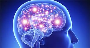 Desarrollan anticuerpo que puede prevenir las lesiones cerebrales