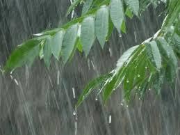 La escasez de lluvias marca el período húmedo en Cuba, afectada por sequía