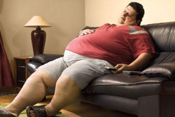 La obesidad está en el cerebro