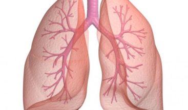 Científicos europeos crean chaleco para controlar pulmones con EPOC