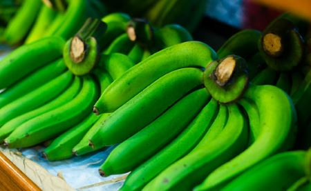 Comerciantes aseguran precios del plátano han disminuido