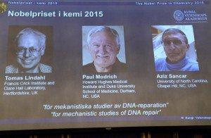 El Nobel de Química premia las investigaciones sobre la reparación del ADN