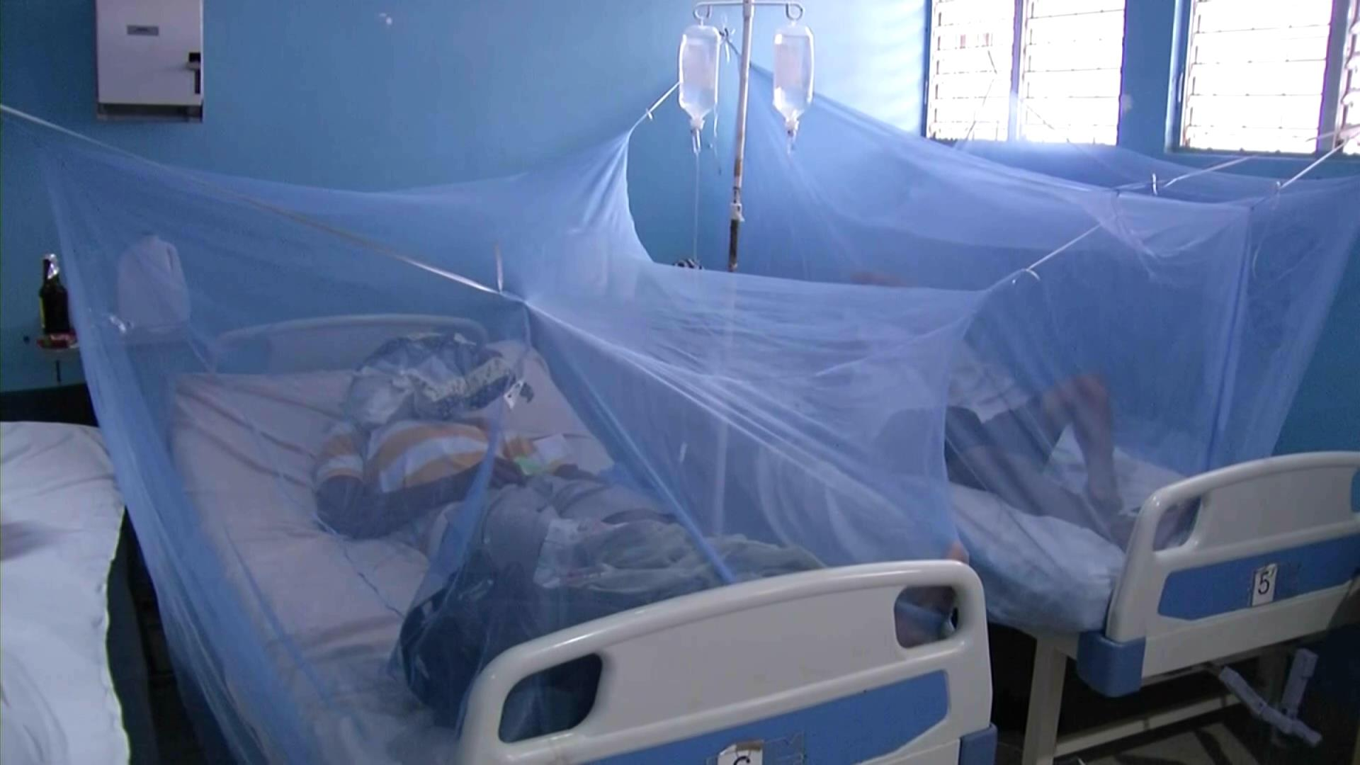 RD segundo país de la región con más muertes por dengue, según OMS
