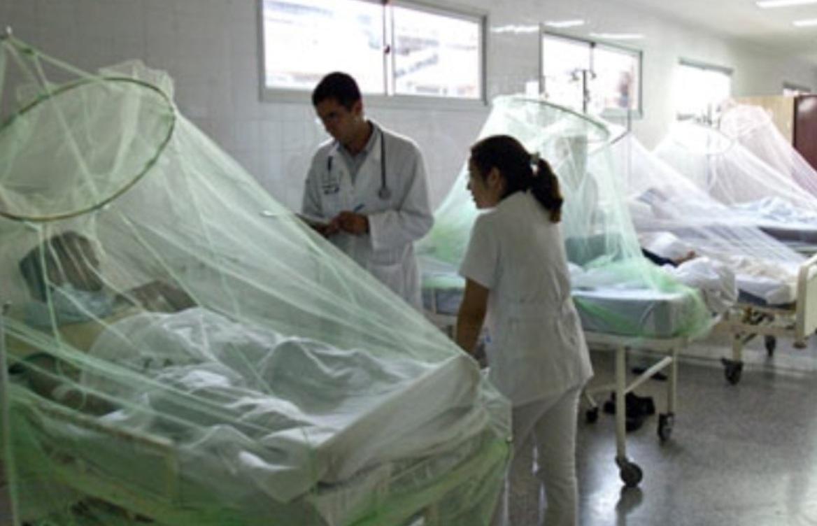 OPS audita expedientes de muertes por dengue