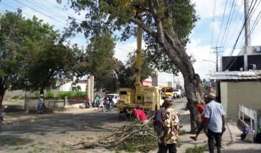 Medio Ambiente realiza labores de prevención ante huracán Irma