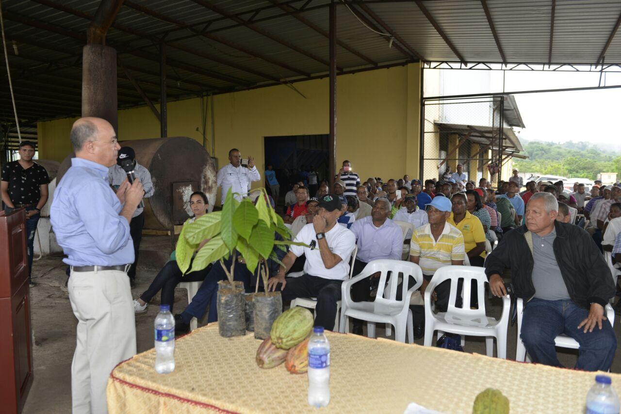 Exhortan a productores en MP a cuidar los bosques para garantizar sostenibilidad de producción de cacao