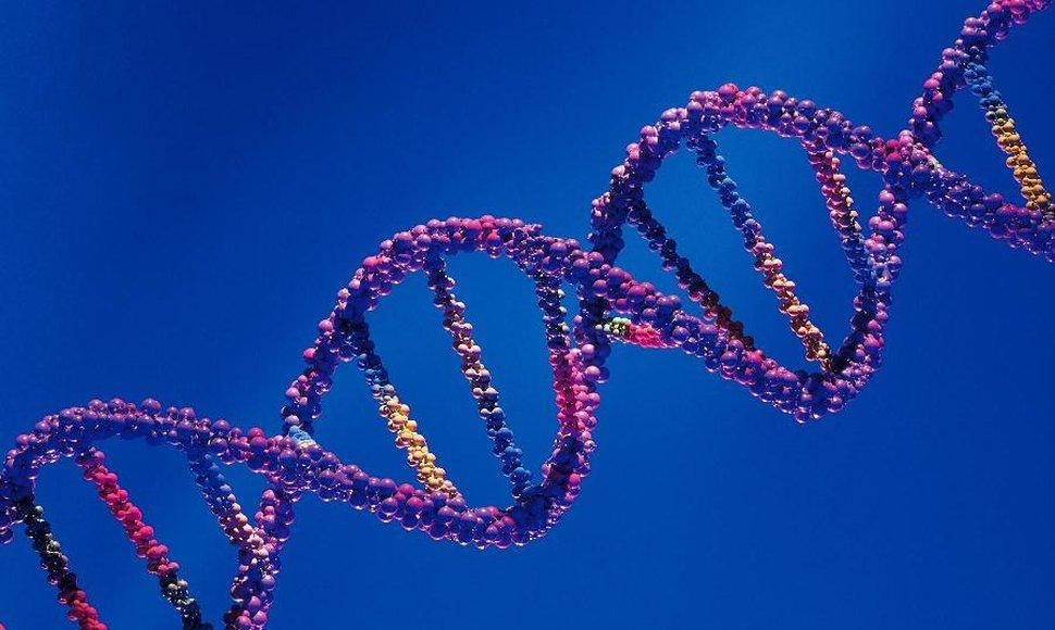 El ADN, clave para resolver mentiras o verdades sobre la paternidad
