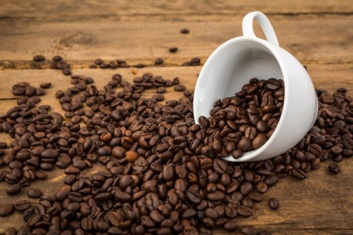 Cambio climático modificará zonas aptas para producir café, predice estudio