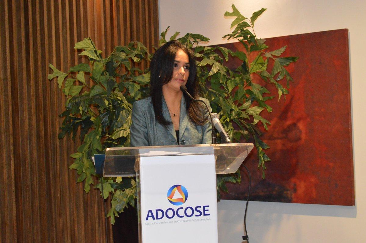 Directora Ejecutiva del INTRANT dicta conferencia ante aseguradores de vehículos