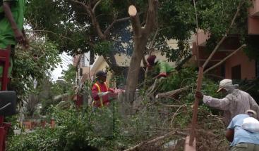 Alcaldía SDE ordena limpieza de cañadas, reforzamiento en recogida de basura por el paso del huracán María