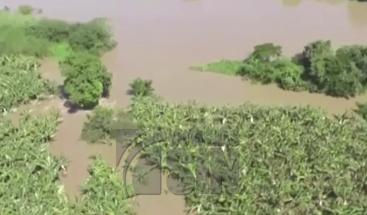 Pérdidas millonarias por lluvias en agricultura en Montecristi