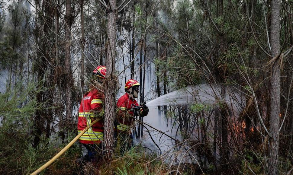 Suben a 37 los muertos y 71 los heridos en incendios de Portugal, ya extintos