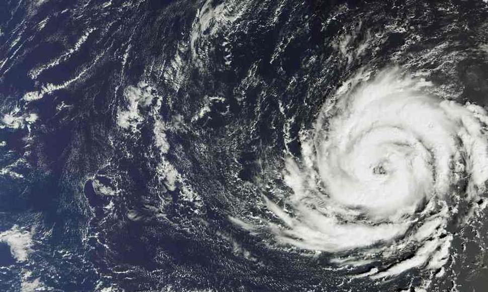 Una mujer muere al caerle un árbol por la tormenta Ofelia en Irlanda