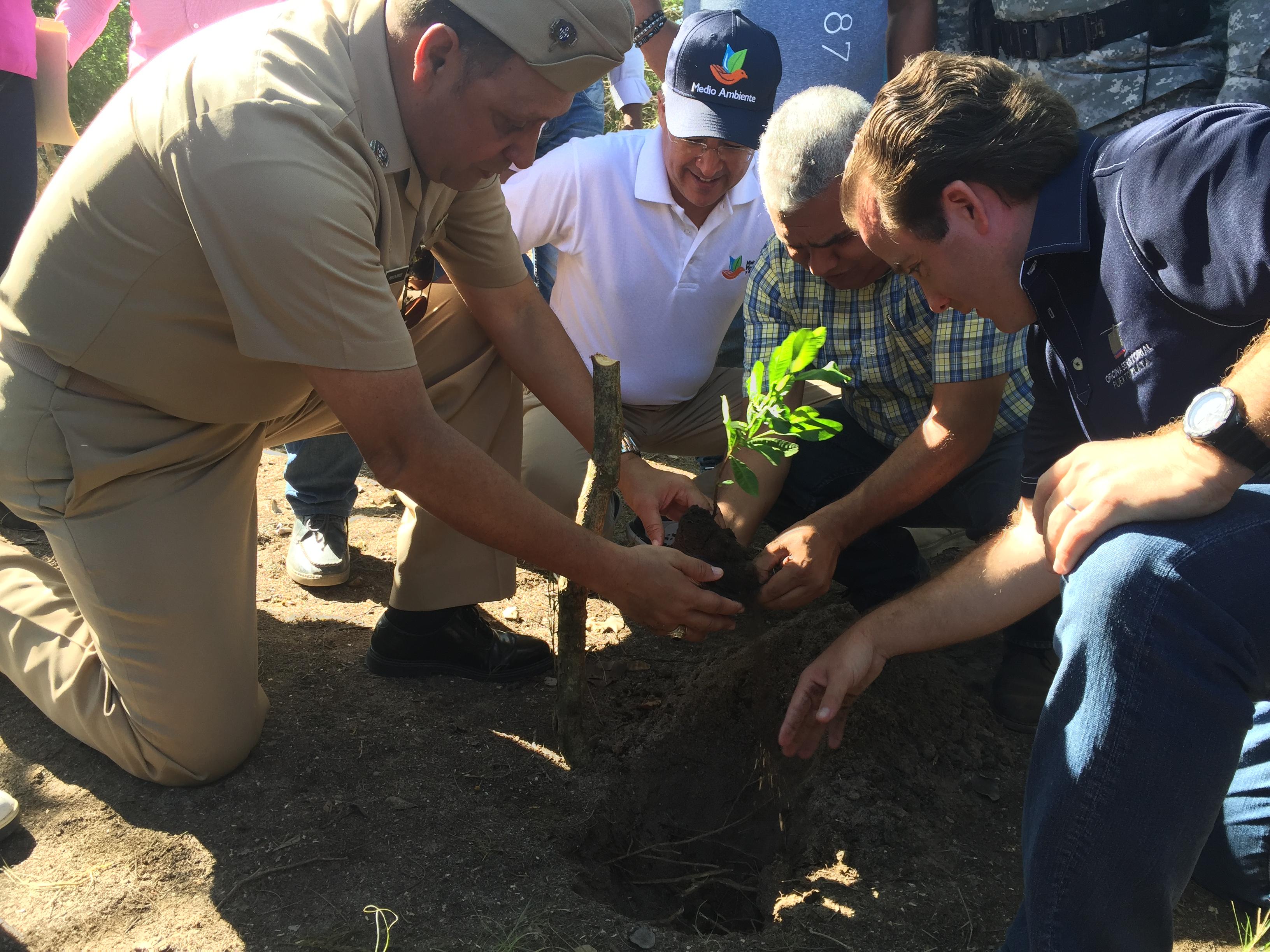 Medio Ambiente inicia recuperación forestal de la Bahía de Luperón