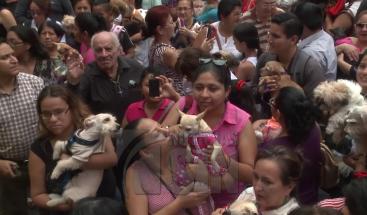 Celebran misa para bendecir mascotas en Ecuador