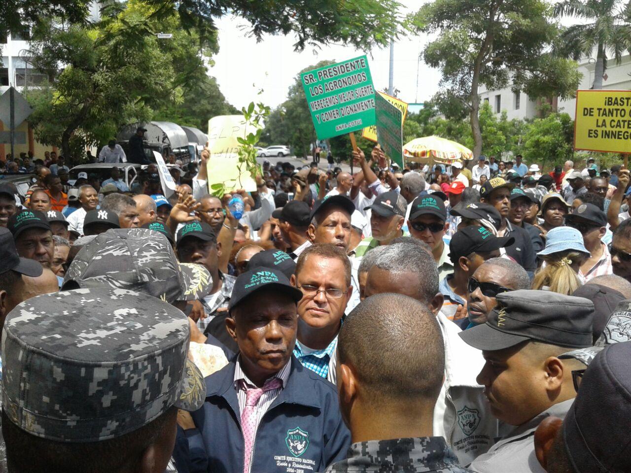 Asociación Nacional de Profesionales Agrícolas marchan en demanda de pensión para 400 de sus miembros