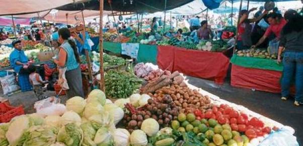 En 2100 se producirá alimento para 10.000 millones de personas, según la FAO