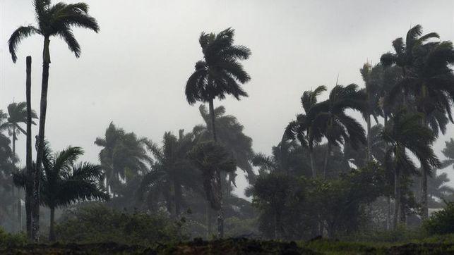 Una mujer muere al caer un árbol por la tormenta Ofelia en Irlanda
