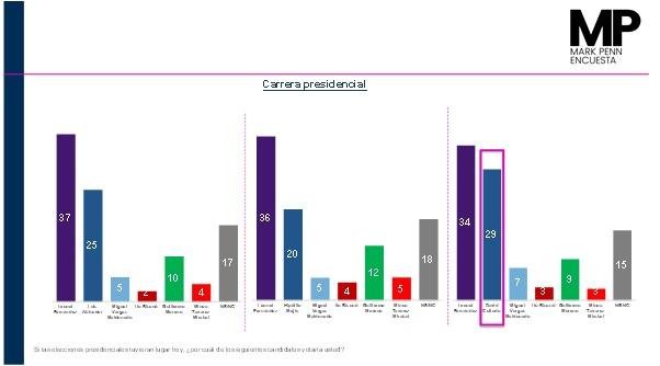 Encuesta Mark Penn: Leonel Fernández les gana a los candidatos del PRM