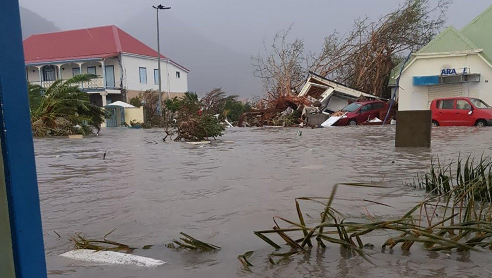 El interior de Puerto Rico busca revivir y volver a ser verde tras paso ciclón