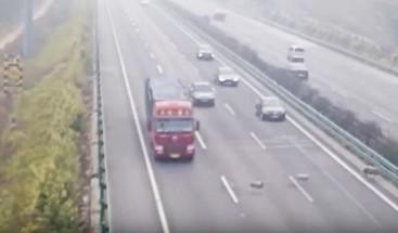 Vídeo: Tres ovejas provocan un accidente de tráfico mortal en China