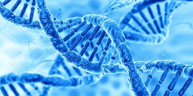 Genes vinculados a esquizofrenia bloquean tratamiento con litio en bipolares