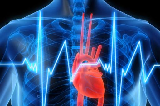 Método robótico logra revertir insuficiencia cardiaca con señales eléctricas