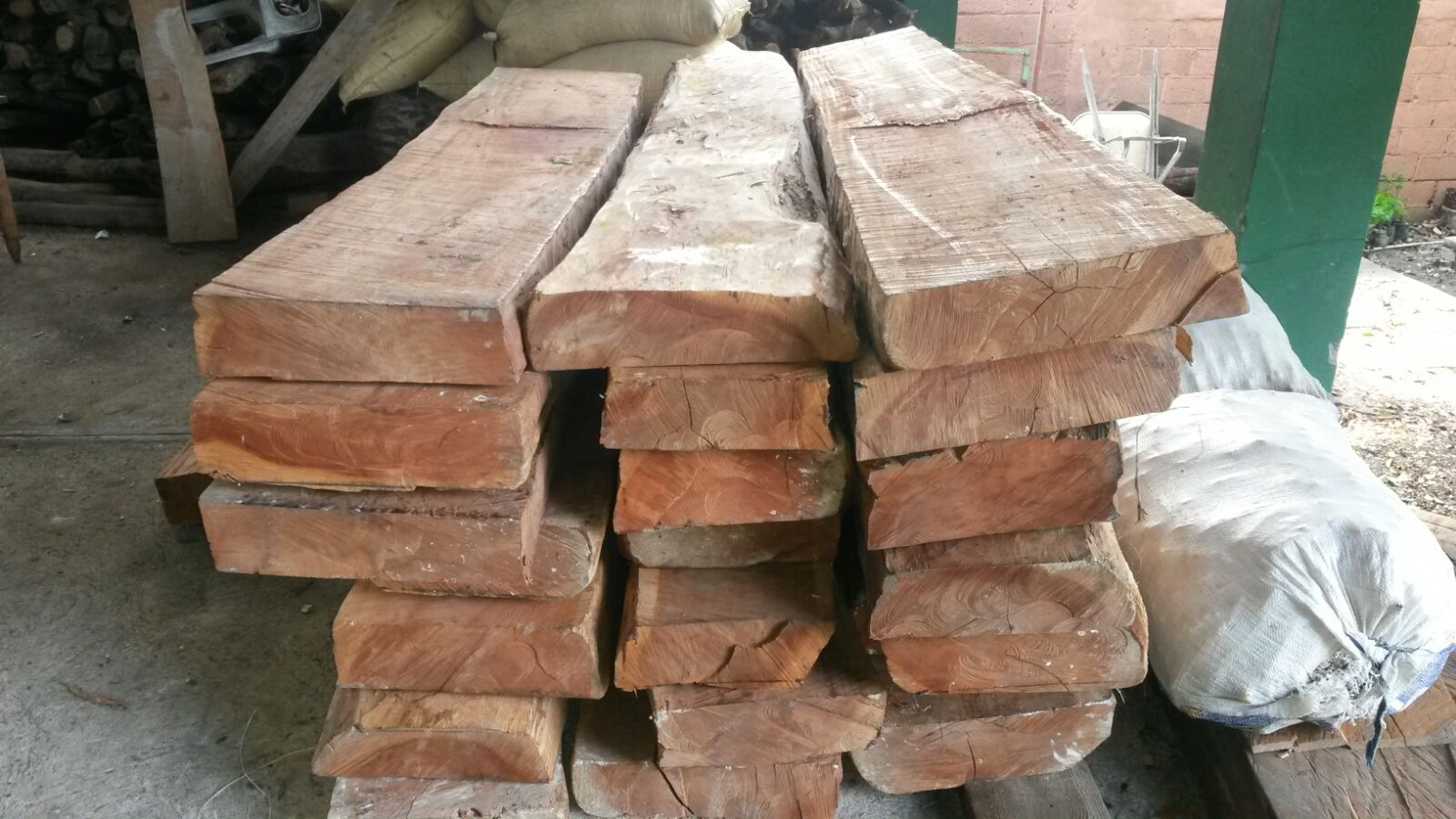 Medio Ambiente incauta madera cortada ilegalmente en SFM