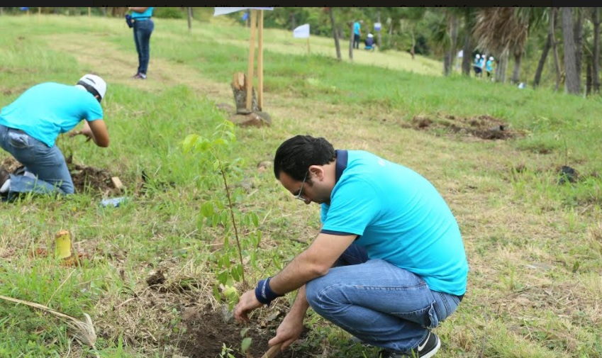 Empleados del Popular siembran más de 2,600 árboles en el Plan Sierra