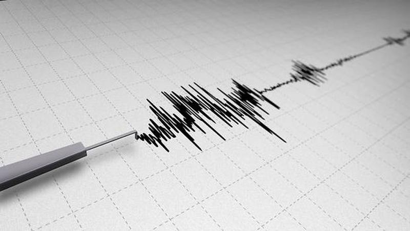 Un terremoto de 7,2 grados sacude frontera entre Irak e Irán