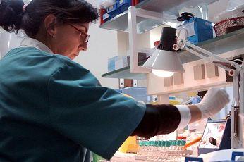La OMS anuncia que brote de fiebre de Marburgo en Uganda ha sido controlado