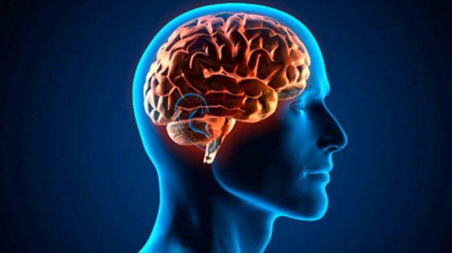 El cerebro humano es capaz de 'ver' el futuro