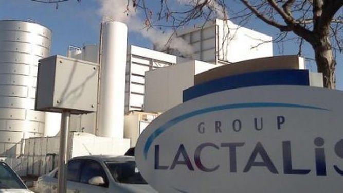 Investigarán la salmonela detectada en leche infantil en Francia