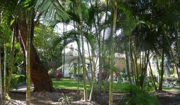 Hombre destruye parque en el sector Villa Liberación