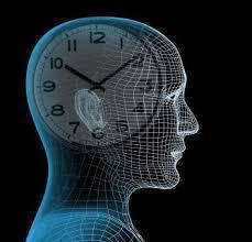 El reloj biológico puede ayudar a acabar con el cáncer
