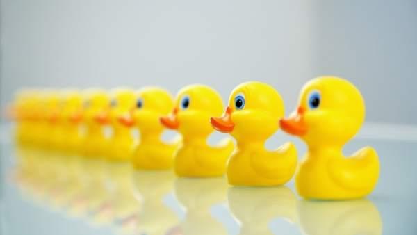 Estudio alerta del peligro bacteriano de los patos de goma del baño