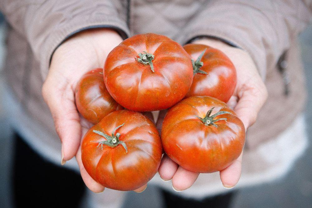 De tomates feos a tapas gourmet, una idea para concienciar sobre despilfarro