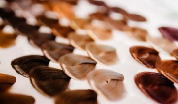 Estudio identifica más de cien genes que determinan el color del pelo