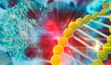Disponible la primera inmunoterapia para cáncer de vejiga y de pulmón