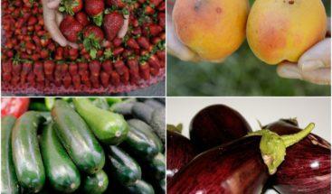 Alimentos de temporada en primavera: color, olor y sabor