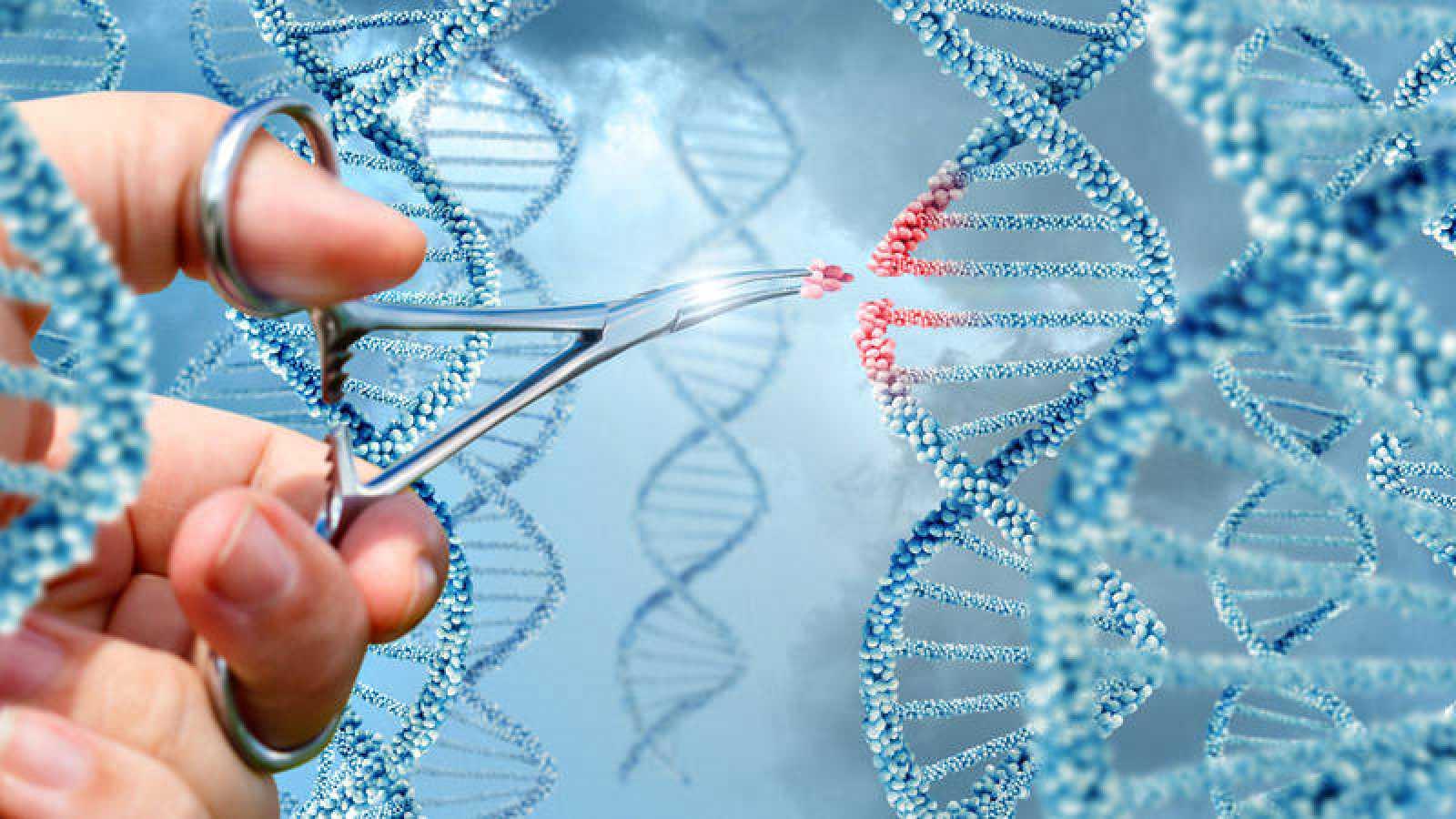 Hallan alteraciones genéticas del autismo que se heredan vía paterna